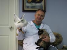 istanbul-veteriner-poliklinigi.02jpg