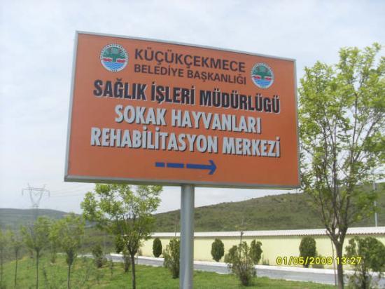 kcekmece-rehabilitasyon