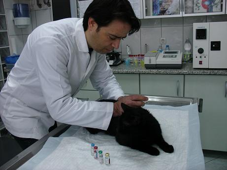 ozoner-veteriner-klinigi-01