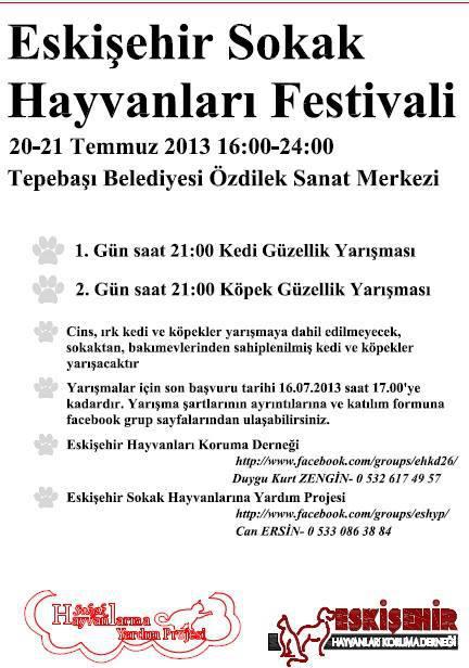 eskisehir-sokak-hayvanlari-festivali