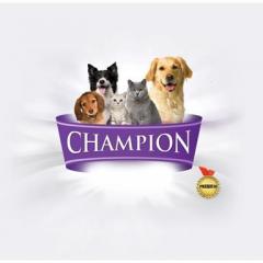 Champion Sizinle Tanışmaya Geliyor…