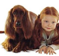 Evcil Hayvan Beslemenin Çocuklara Faydaları?