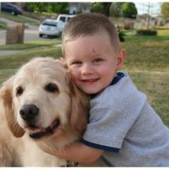 Çocuklarda Köpek Korkusu