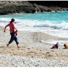 Türkiye Bu Köpeği Konuşuyor!
