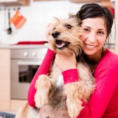 Her Köpek Sahibinin Bilmesi Gerekenler