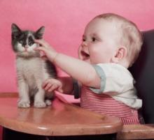 bebek-ve-kedi-05