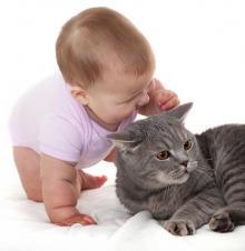 bebek-ve-kedi-10