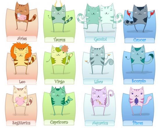 kedi-burclari-01