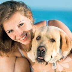 Pet Sahiplerinin Yaptığı Önemli Hatalar!